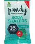 Pandy Protein Soda shakers 70 g