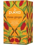 Pukka Te three ginger 36 st